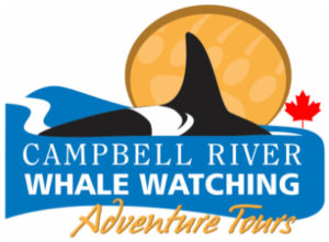Campbell River Whale Watching