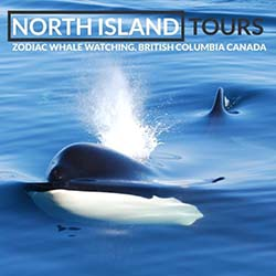 North Island Tours